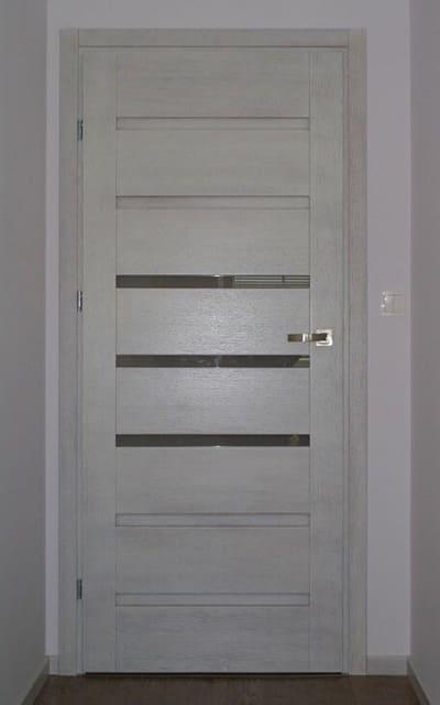 Міжкімнатні двері в стилі модерн